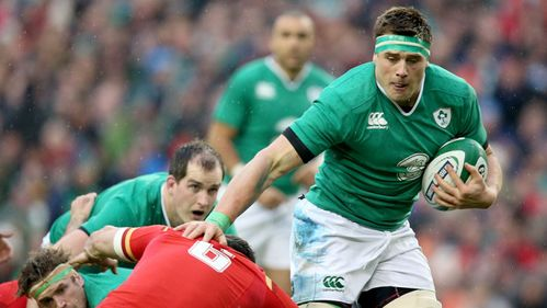 Stander link-up excites fit-again O'Brien