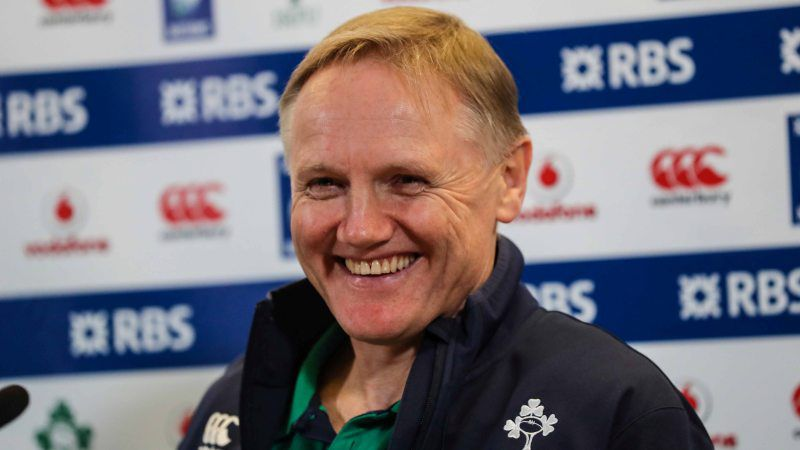 Joe Schmidt's Ireland take on both the USA and Japan this summer
